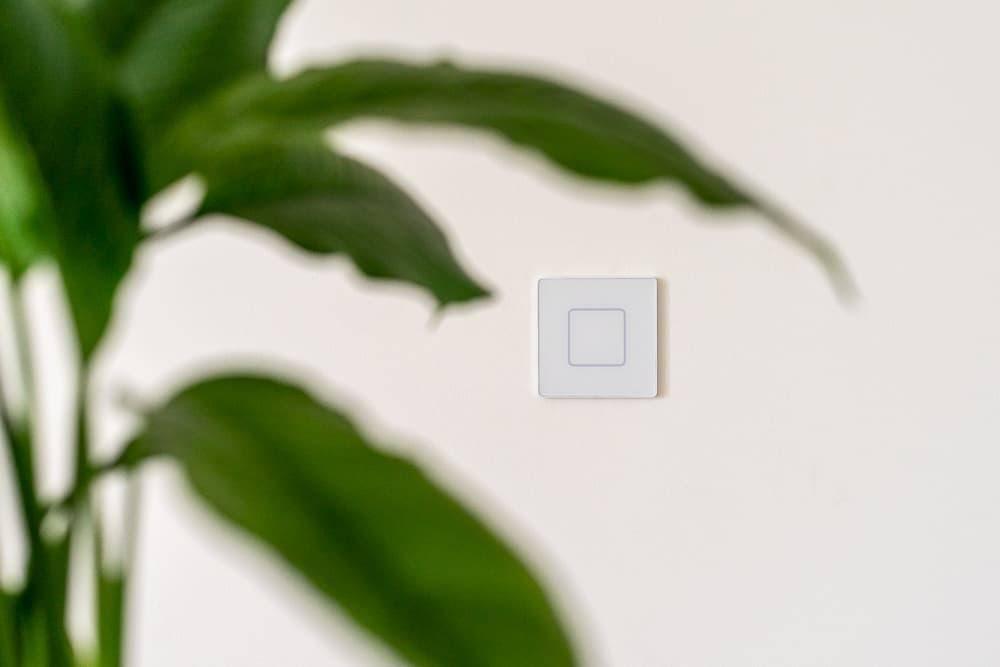 Faradite TAP 1 mattweißer Schalter auf einer weißen Wand mit einer Pflanze