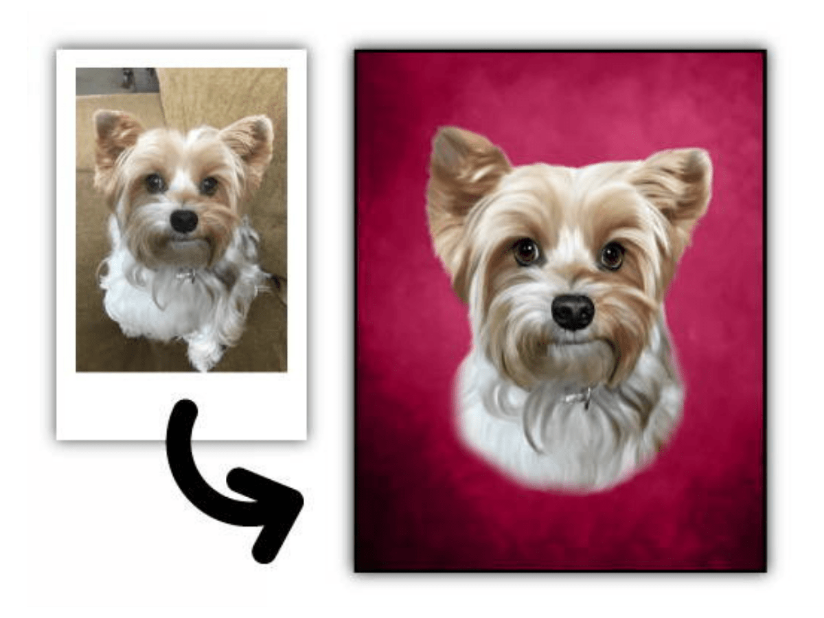 Turn any pet photo into a portrait