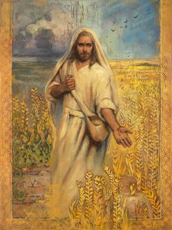 Painting of Jesus planting seeds in a wheat field.