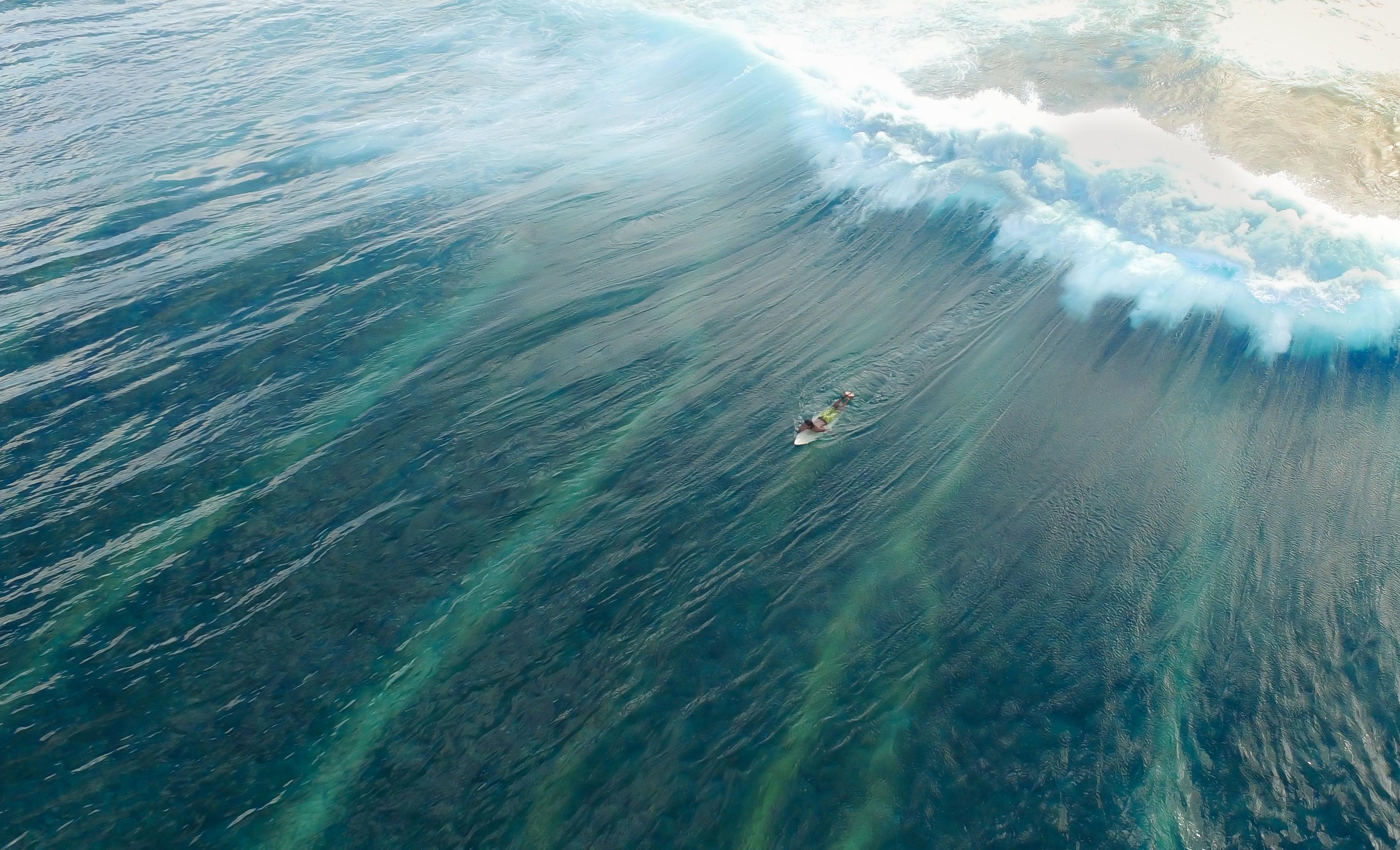 ellemer surf safari