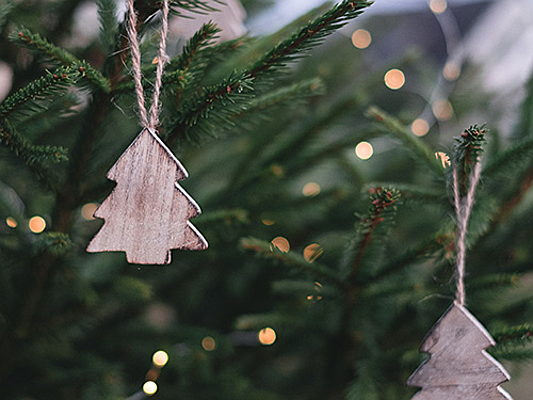 Tarragona - How to preserve the tradition of the festively decorated Christmas tree in a more sustainable way. Find out more about this in our new blog post!