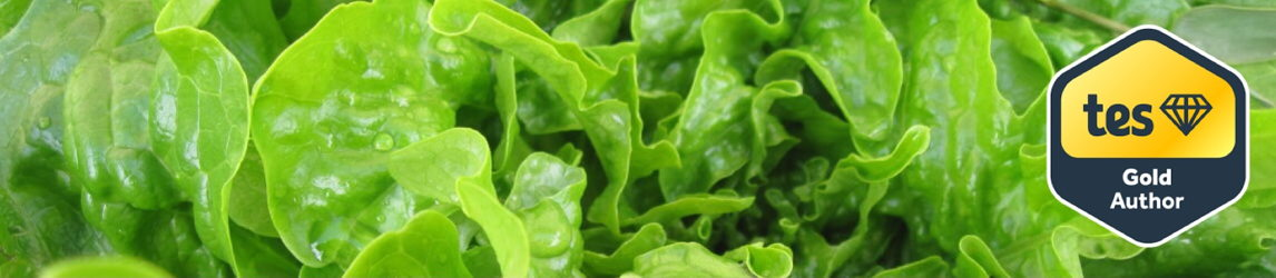 Fresh Lettuce Biology  Resources