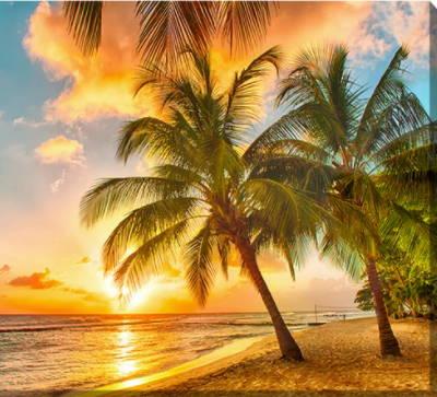 Beach/Coastal Canvas Art, Beach Canvas Art, Coastal Canvas Art, Tropical Canvas Art