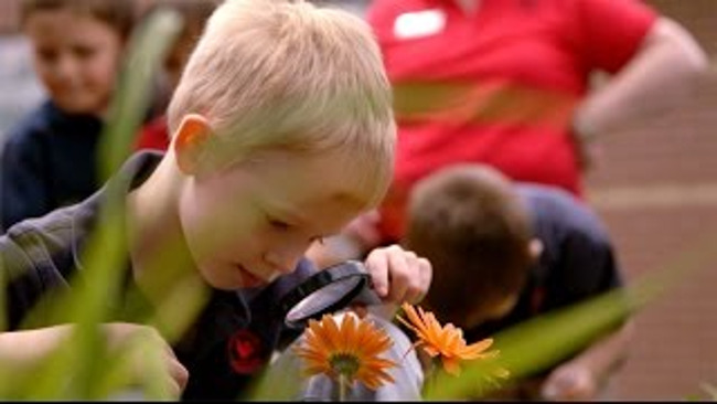 Close up of a young Primrose student looking at flower through a magnifying glass