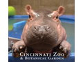 Cincinnati Zoo Tickets