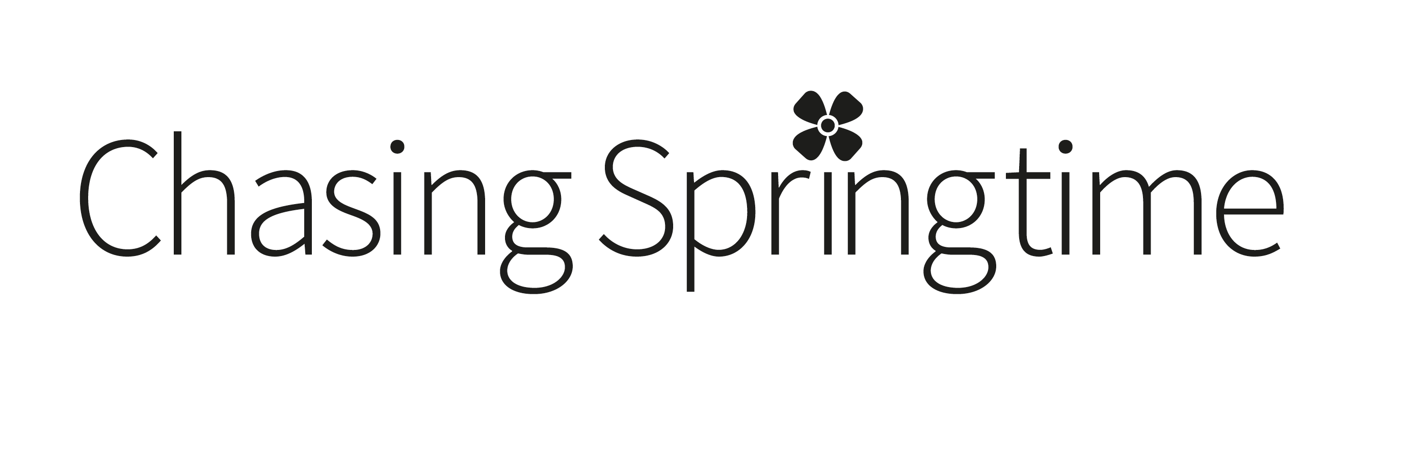 Logo for Chasing Springtime Online Women's Plus Size Clothing Store