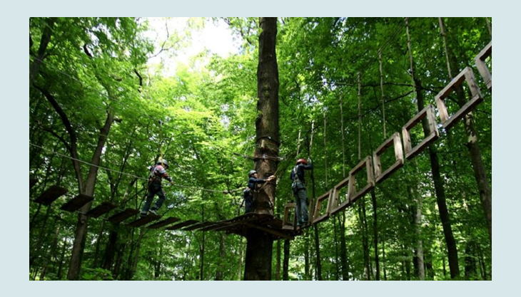 kletterwald freischütz wackel brücke