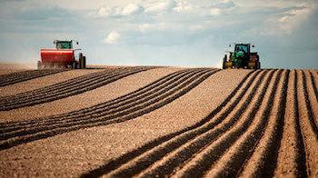 Государственная поддержка сельскохозяйственной кооперации
