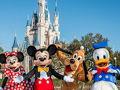 Celebrate the Magic of Disney!