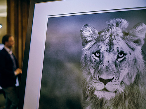E&V Kitzbühel invite guests to exclusive David Yarrow vernissage