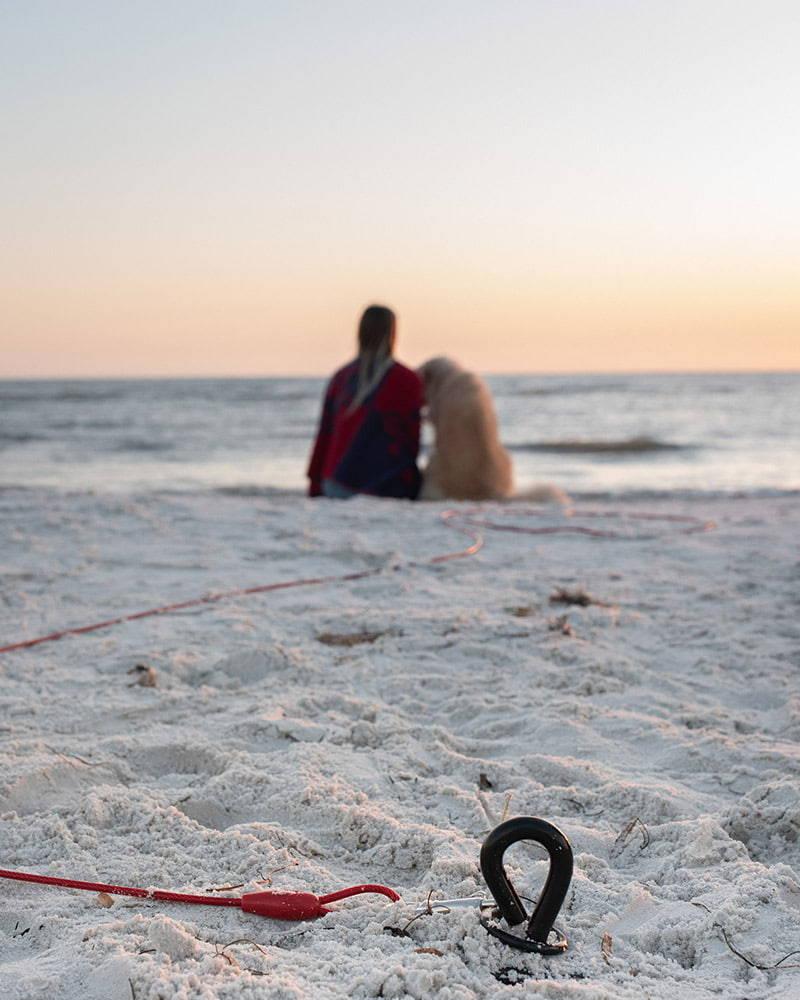 saker dog stake used at the beach