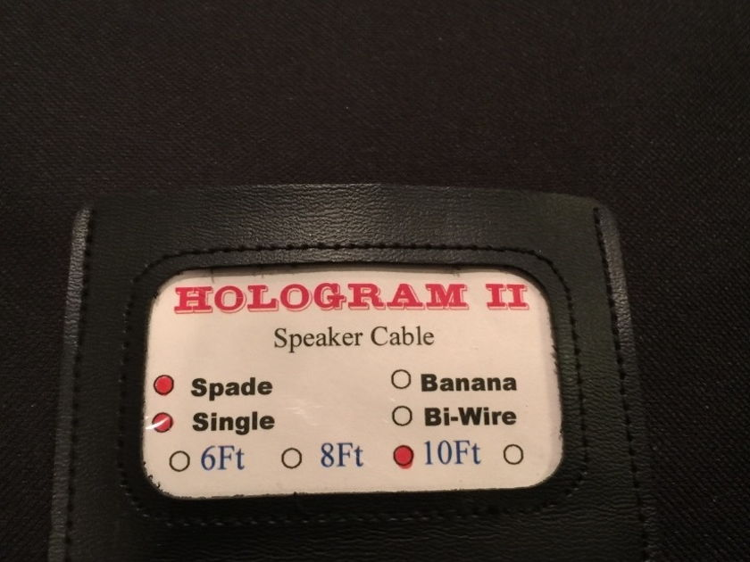 Acoustic Zen Technologies Hologram II 10ft