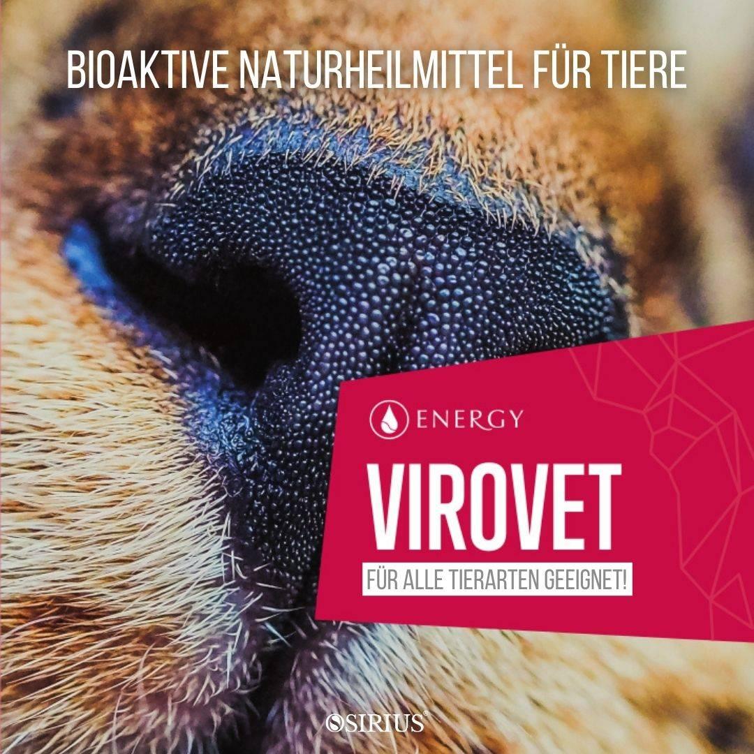 Virovet  Naturheilmittel für Tiere, Hunde, Katzen, Pferde und andere Tiere!