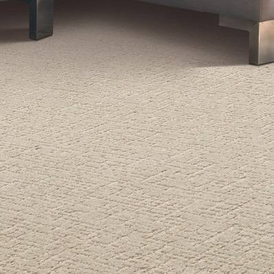 Timeless Journey Carpet - Tahoe Taupe