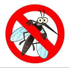 anti moustique naturel comment tuer produit efficace débarasser appareil naturel sans produits chimiques