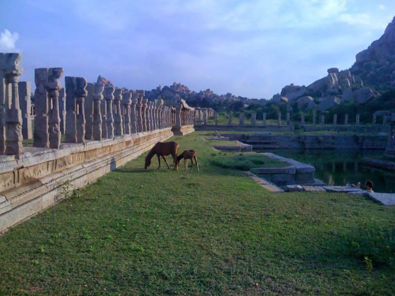 Horse and Foal Ruins Hampi