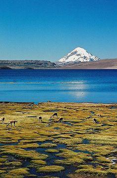 Mochilão de 15 dias Chile/Bolivia