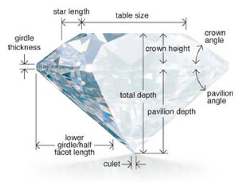 diamond`s anatomy