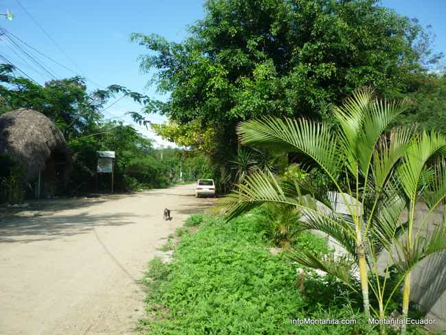 Tigrillo Neighborhood-Montañita