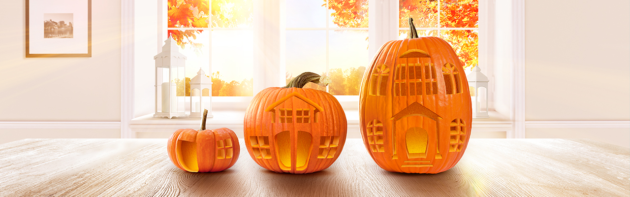 Hamburg - Use the time around Helloween and realize the sale of your property in Germany
