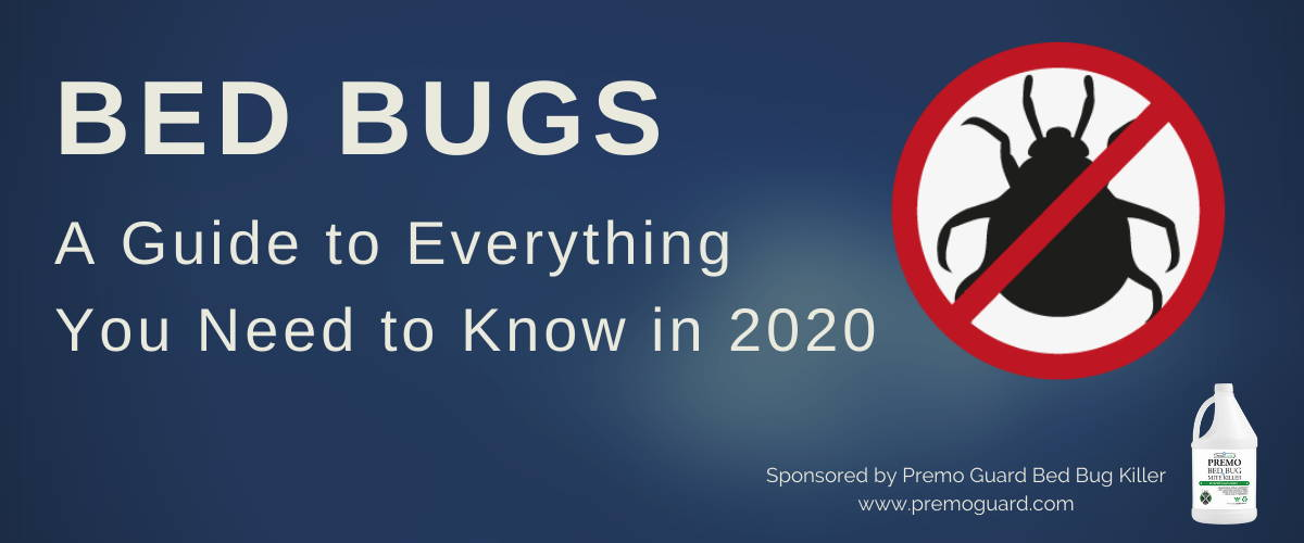 Bed Bugs a guide to everything you need to know in 2020 premo guard bed bug spray