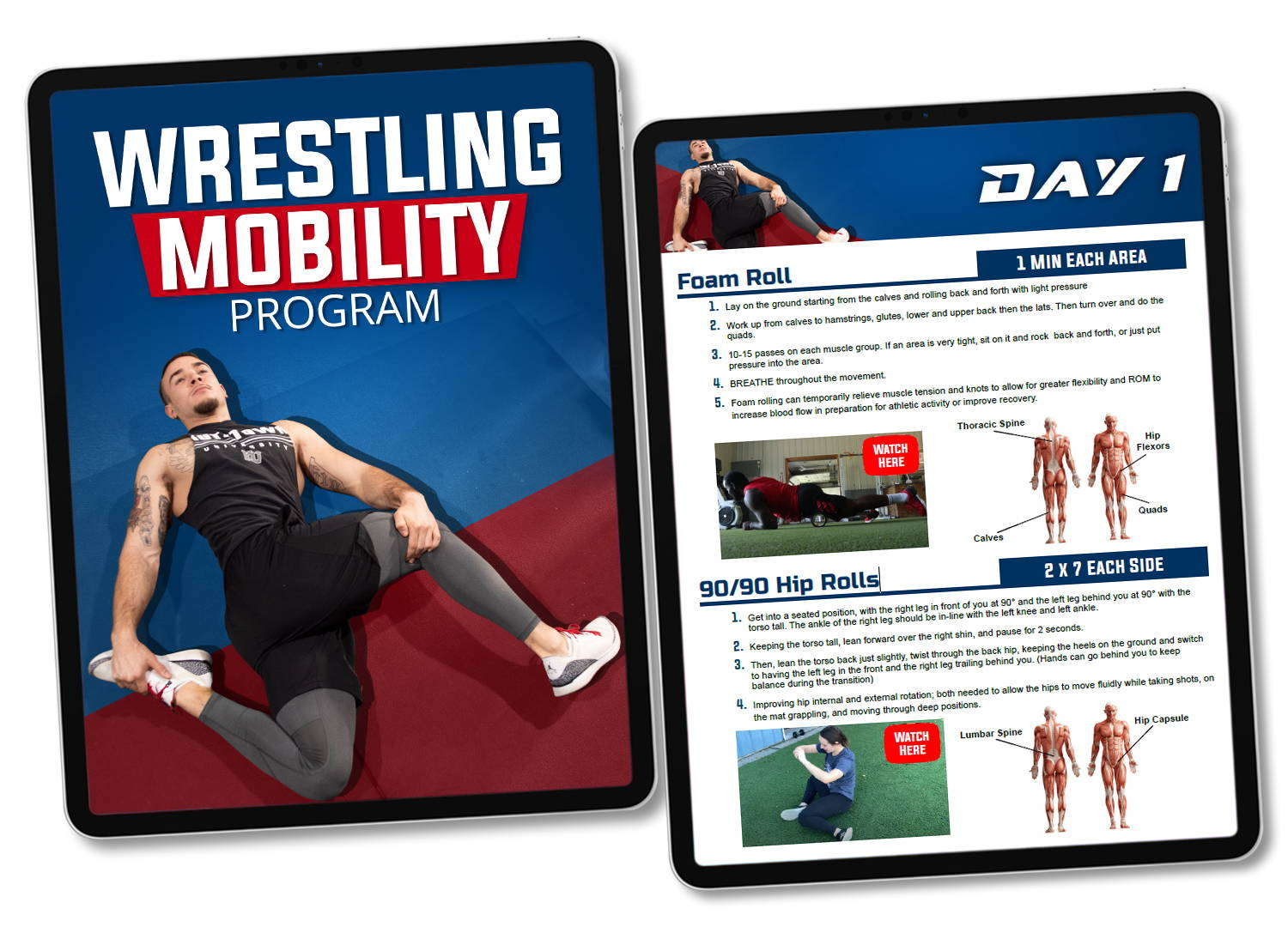 Wrestling strength program