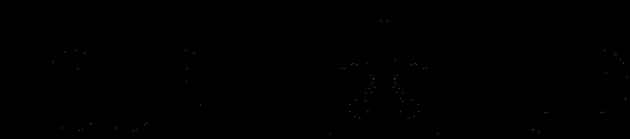 Logo copia 2