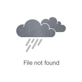 Jennifer Sutton McDonel, PhD