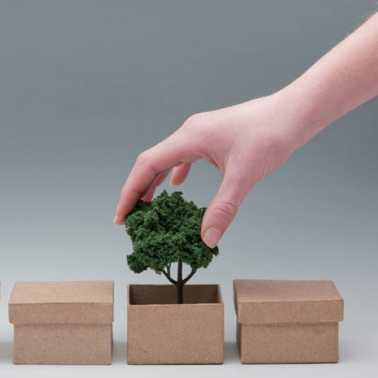 A hand putting a tree in a box to highlight the carbon neutral journey