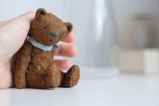 Мишка тедди Pocket friend Teddy