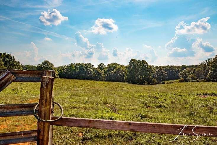 Milford Family Farm - Photo