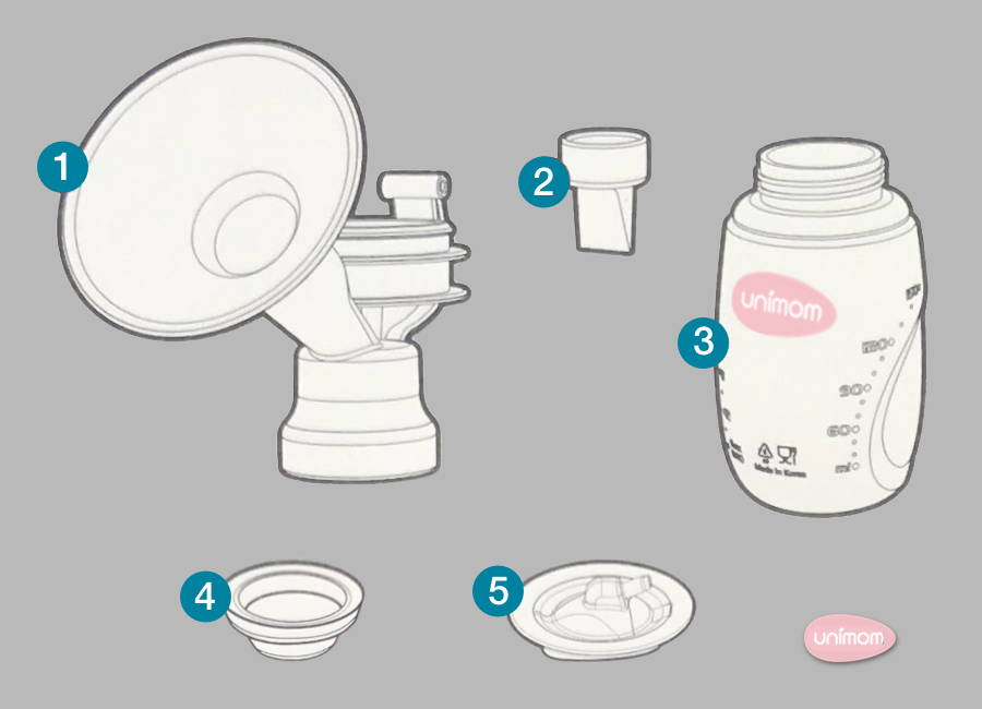 Bottle - Assembly and Use of Minuet Double Electric Breast Pump