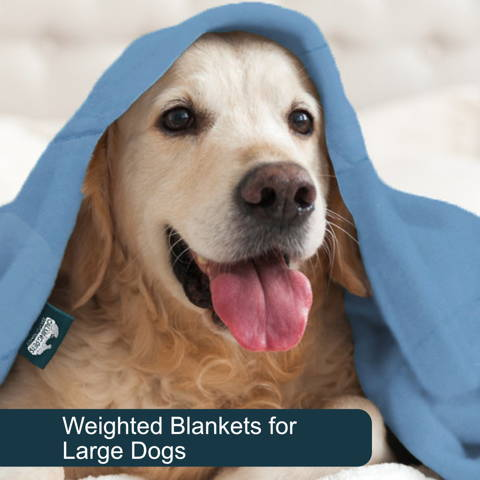 Weighted blankets for large dogs