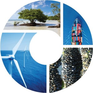 Opportunities for Ocean-Climate Action in the United States
