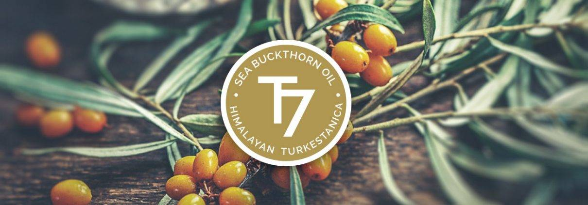 Sea Buckthorn Oil T7 Himalayan Turkestanica seal