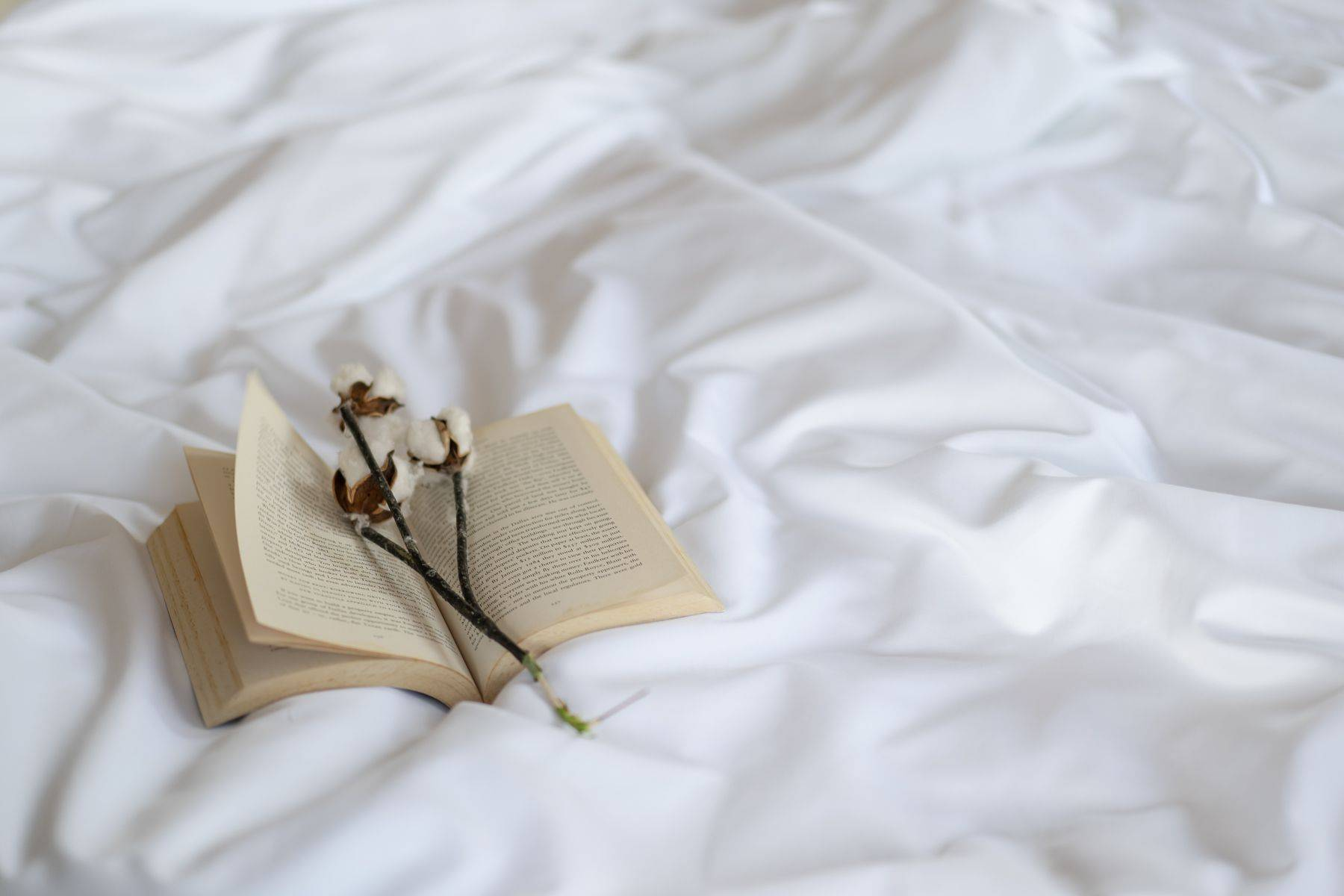A book and cotton plant on a bed, featuring Weavve's Cotton Sheets in White