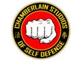 Karate Birthday Party at Chamberlain Studios of Self Defense