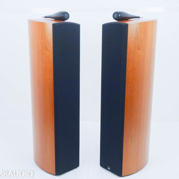 803D Floorstanding Speakers