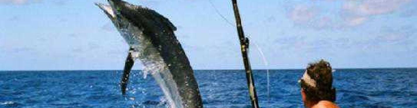 Рыбалка + тур к острову Лембонган
