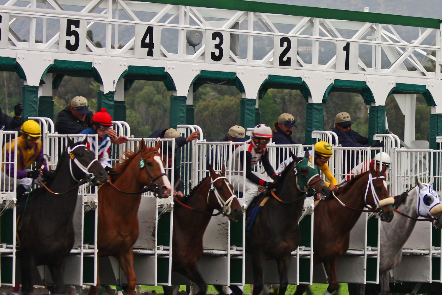 Off Track Betting in Ontario - Best Places to Bet on Horse Racing