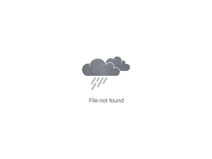 Honey Lime Fruit Toss Image