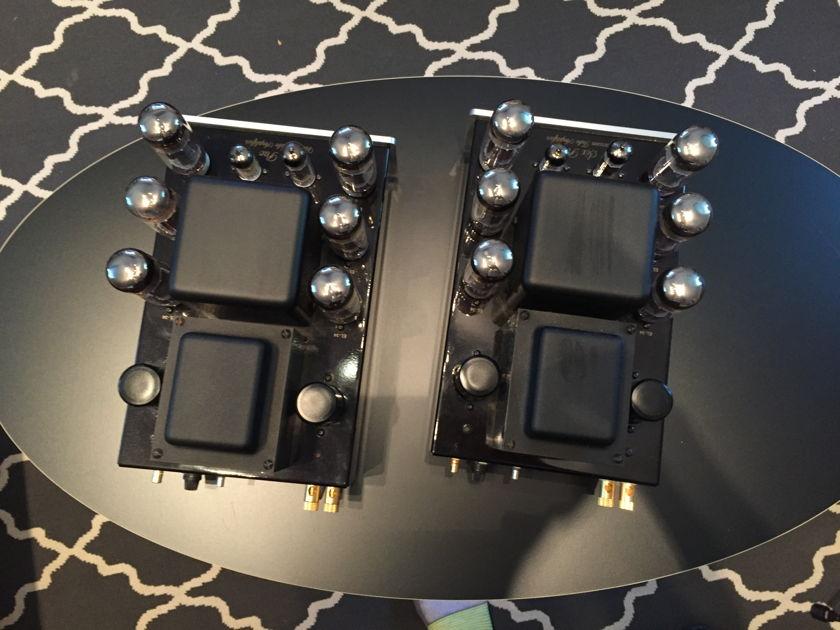 AES Sixpac Tube Mono Blocks