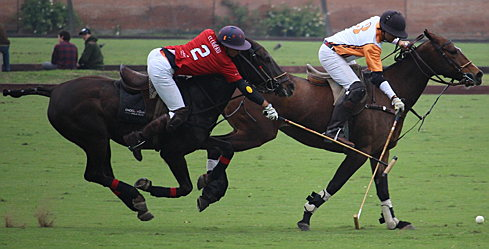Santiago - Engel & Völkers Polo Team