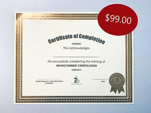 online microcurrent certification class