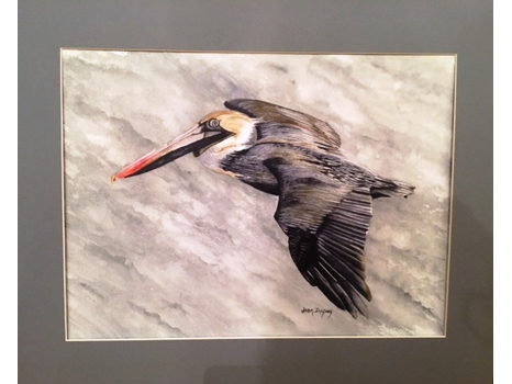 "Joan Dupuy ""Pelican"""