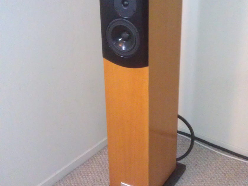 Salk  Songtowers QWT Great condition, Oak!