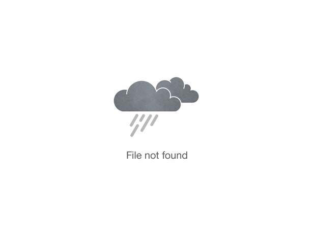 Mandarin Mint Champagne Cocktail