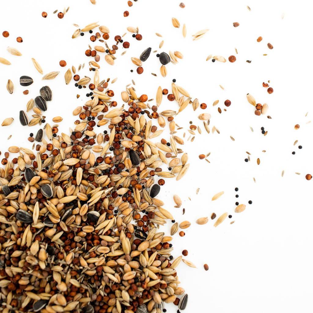 Topflite premium wild bird feed