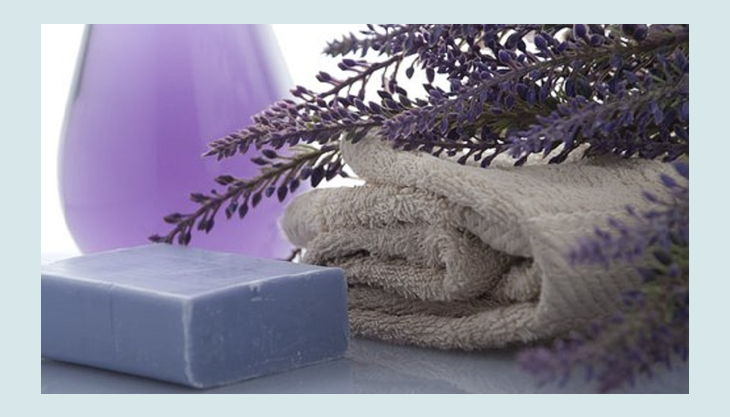 sdp soap party lavendel seife