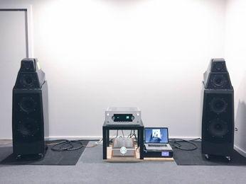 audiohippo's system